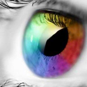¿Cómo vemos el color?